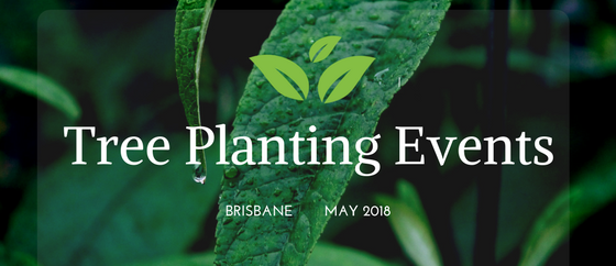 Tree Planting Events In Brisbane- May