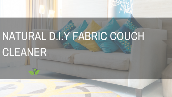 Natural DIY Fabric Couch Cleaner